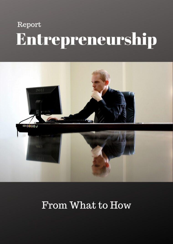 Business Entrepreneurship PLR Report ECourse bundle