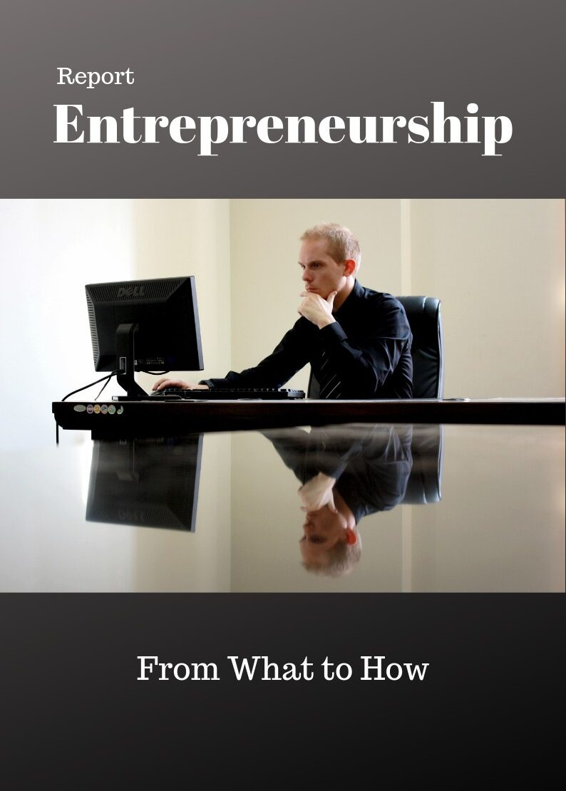 Business Entrepreneurship PLR Report ECourse bundle